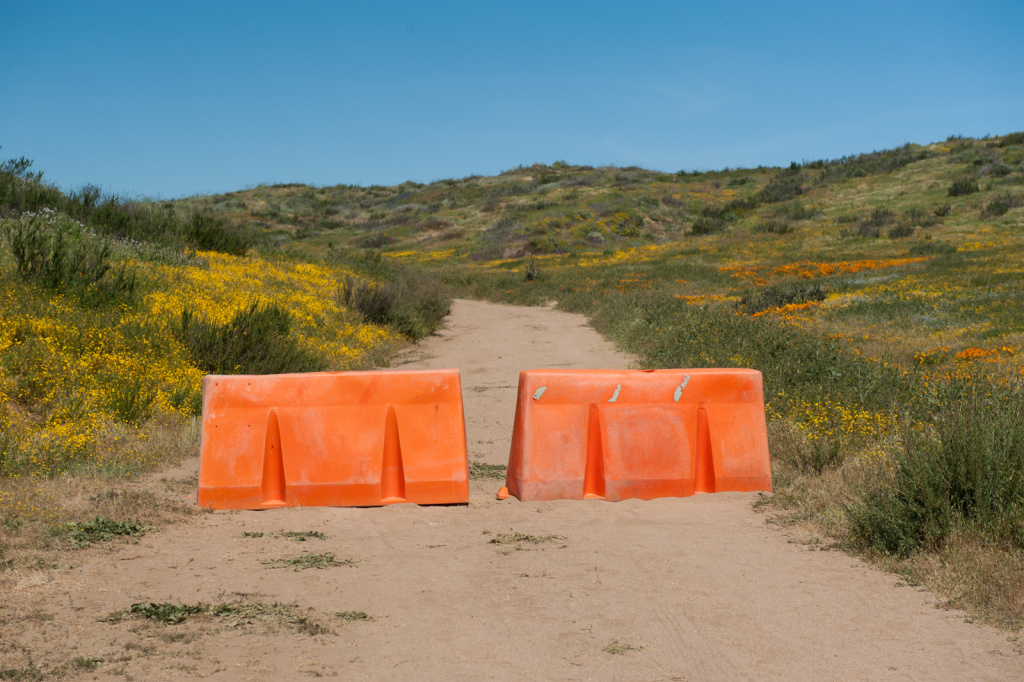 The water district was forced to close the wildflower trail at Diamond Valley Lake.
