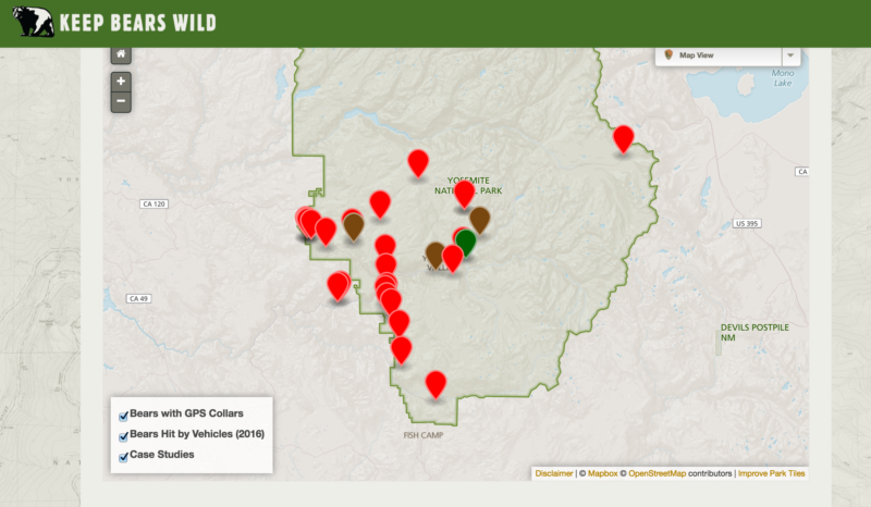Track a Yosemite Black Bear Online? Yes, Now You Can. | The ... on map of atlanta sites, map of venice sites, map of united states sites, map of clovis sites,