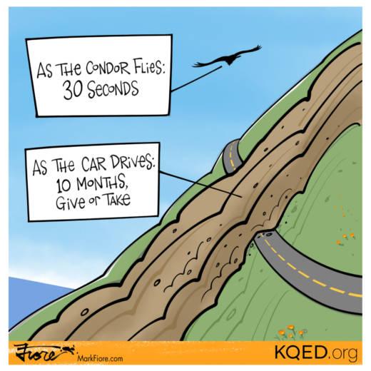 As the Condor Flies by Mark Fiore
