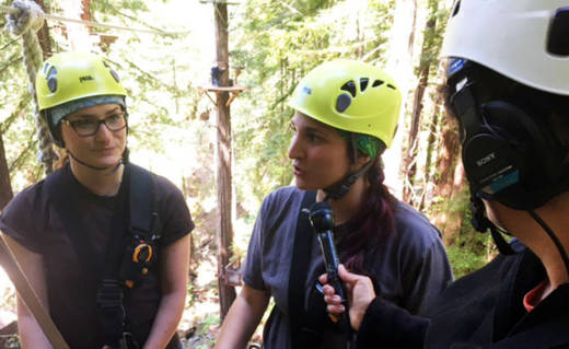 Did you know you could go ziplining in Sonoma County? Host Sasha Khokha interviews zipline guides high above the redwoods.