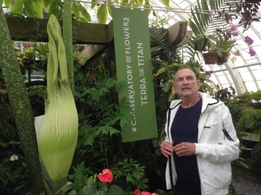 On June 12, 2017, Sidney Price visits Terra the Titan, a corpse flower that used to live in his bathroom and now resides at the San Francisco Conservatory of Flowers.