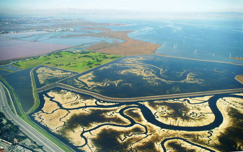 The vast network of commercial salt ponds and degraded marshes in the southern end of the San Francisco Bay are the focus of an intensive restoration effort that encompasses tens of thousands of acres. The wetlands will help protect low-lying communities from flooding by slowing storm surges and absorbing rising seas.