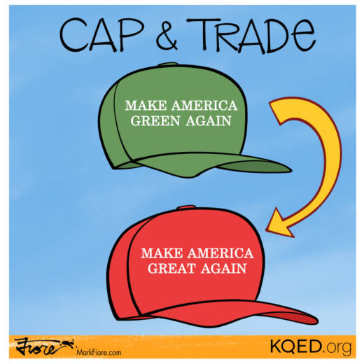 Cap-and-Trade Vote by Mark Fiore