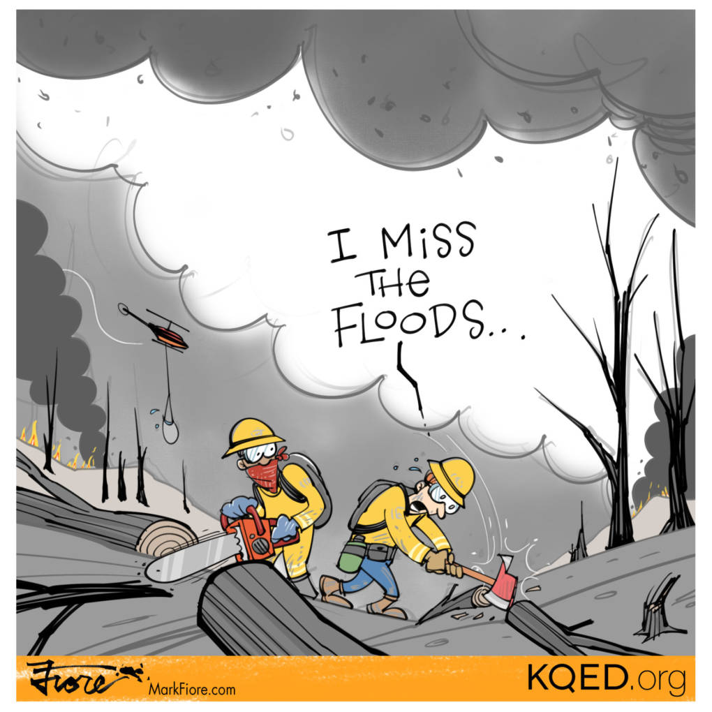 From Floods to Fires by Mark Fiore