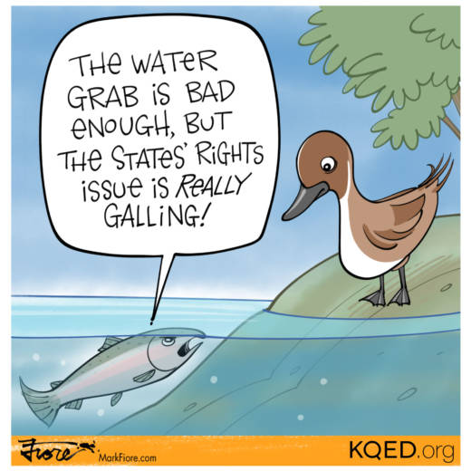 States' Rights by Mark Fiore
