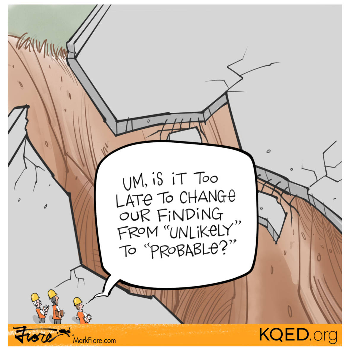 Findings by Mark Fiore