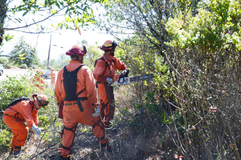 Inmate firefighters clear brush from a roadside in the Berkeley Hills in September. Fire officials say fuel reduction projects like this are critical to preventing major wildfires, but funding for fuel reduction on federal land has been squeezed to pay for increasing firefighting costs.
