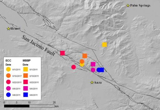 Locations of tectonic tremor (colored circles and squares) detected under the San Jacinto Fault by researchers at UCR.