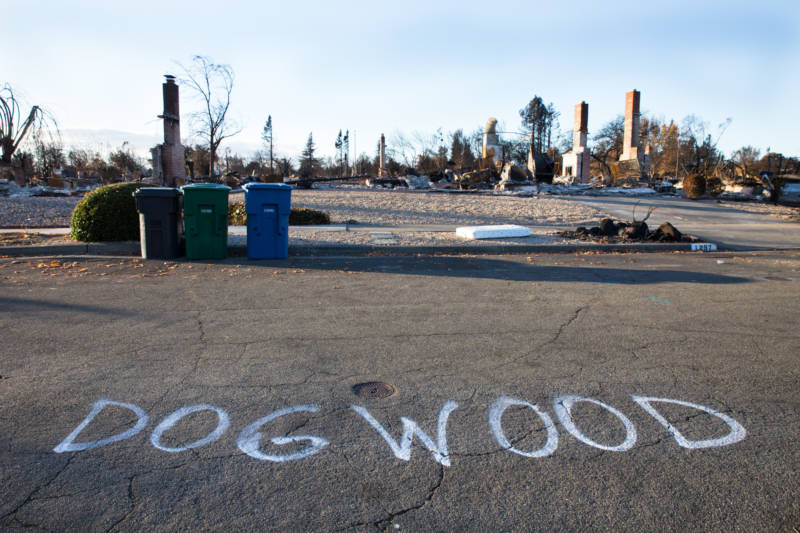 Don Riveras lived on Dogwood Drive in the Coffey Park neighborhood that was destroyed by the Tubbs Fire.