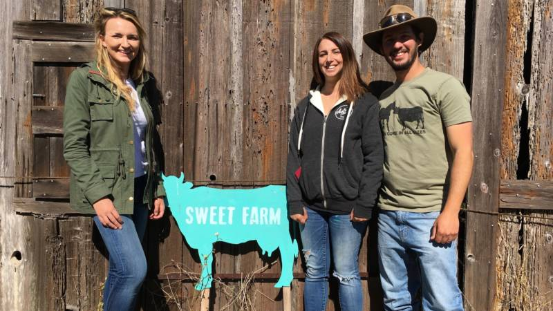 You can't ask just anyone to babysit two 600 lb pigs. Tracy Vogt (left) of Charlie's Acres in Sonoma County knew she could count on Anna Sweet and Nate Salpeter of Sweet Farm to help out in a pinch.