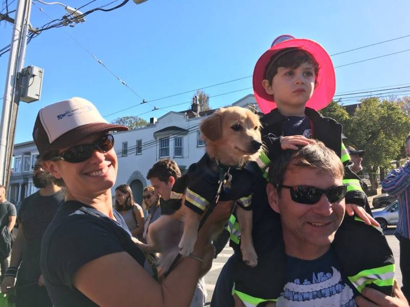 "Cameron Cohn (on shoulders) and his dog Becker dressed up as firemen. Becker won the ""Best in Show"" award."