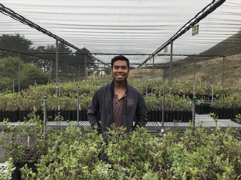 Robin Binaoro at the Marin Headlands Nursery