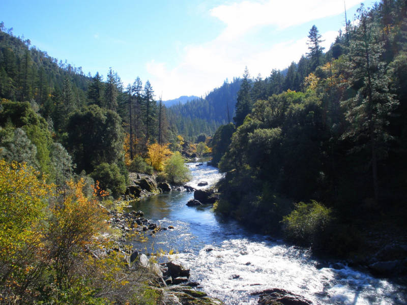 Raised by the River in Forks of Salmon, California