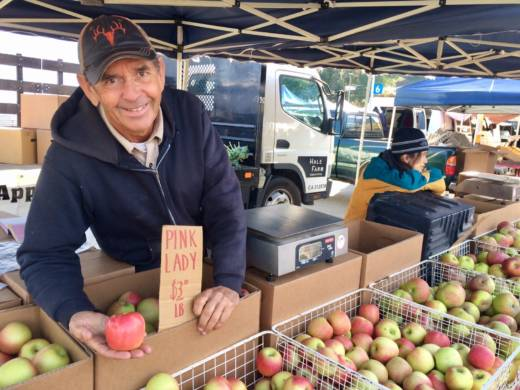 Dave Hale shows off a pink lady apple grown at his Sebastopol orchard. Hale suggests to use a variety of apples in Thanksgiving pies and tarts.