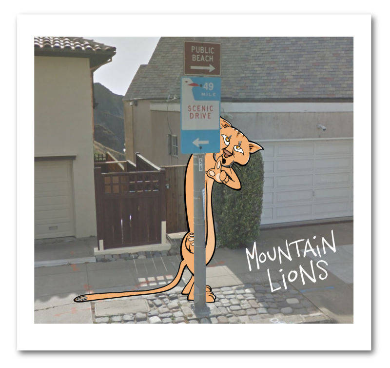 Mountain Lion by Mark Fiore