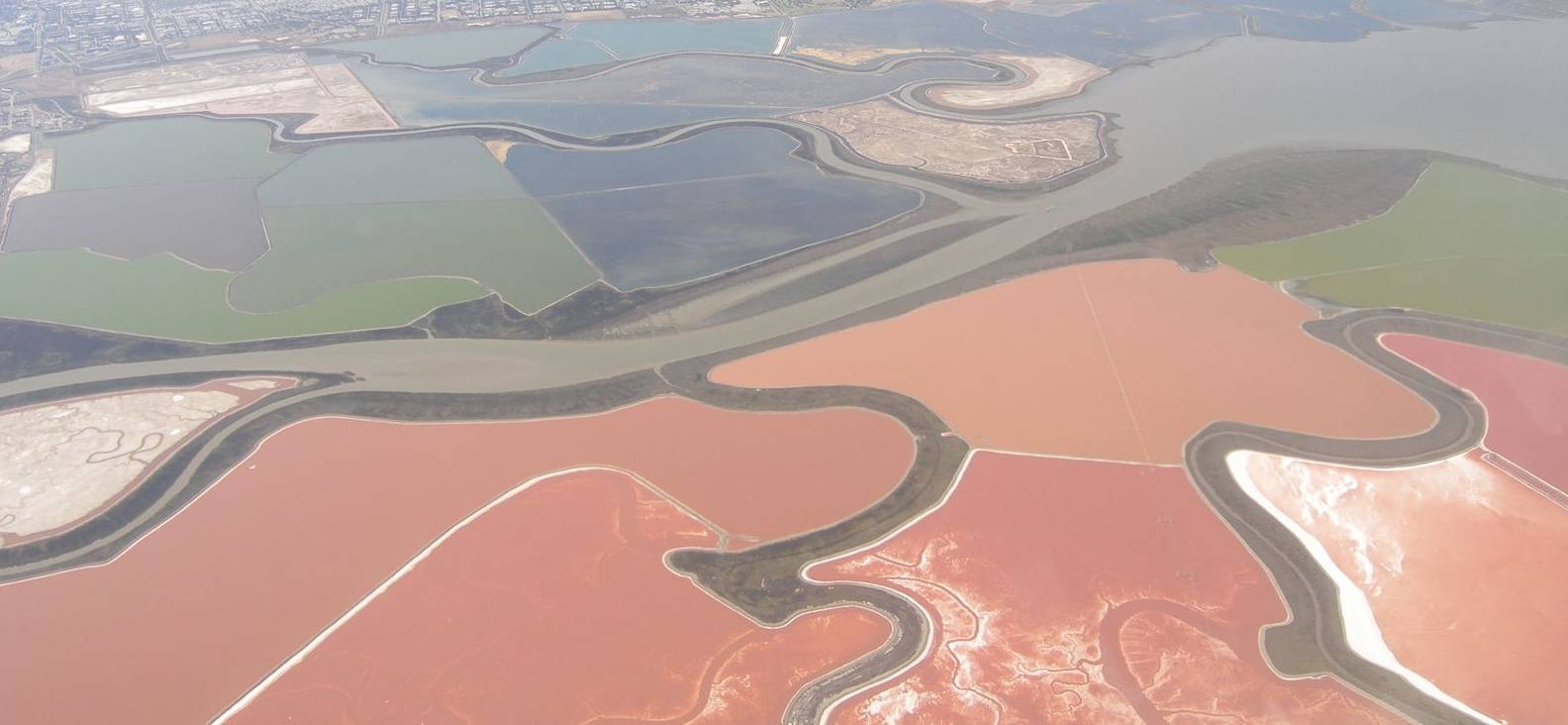 LISTEN: What Are Those Weird, Pink Ponds in San Francisco Bay?