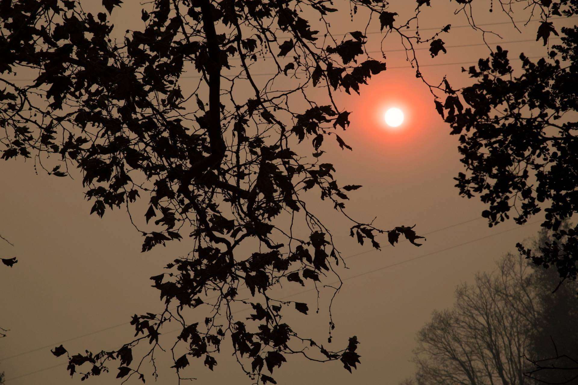The sun shines orange through smoke from the Thomas Fire in the Santa Barbara County town of Carpinteria earlier this week. Parts of Southern California have been under a continual red-flag fire weather warning for nearly two weeks.  Robyn Beck/AFP-Getty Images