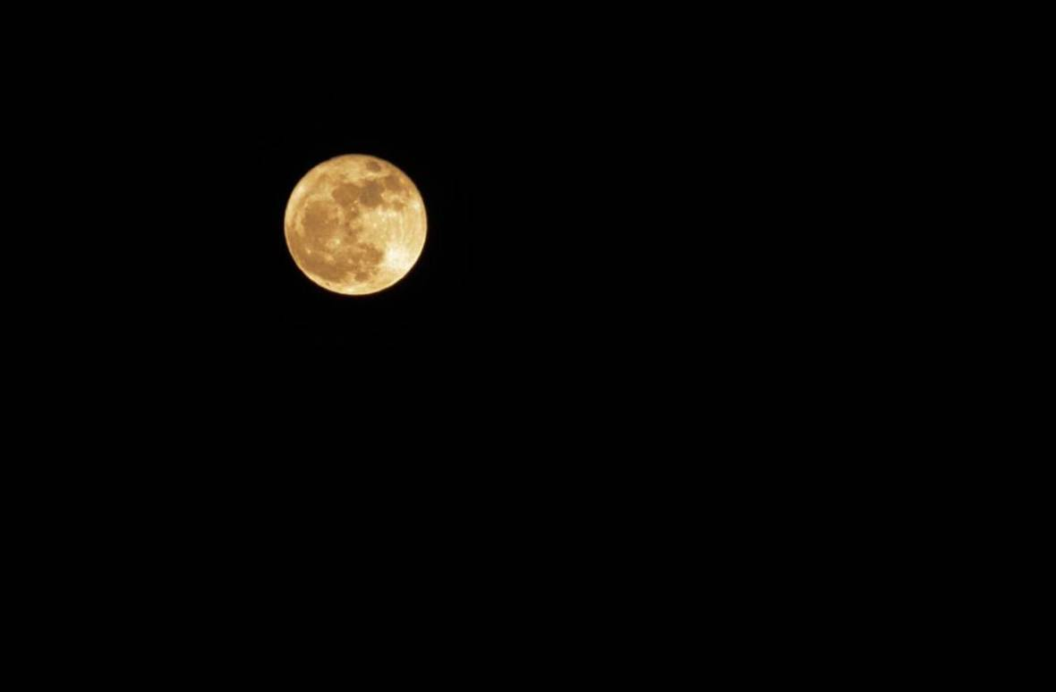 The supermoon as seen from Quintin Chisolm's North Oakland backyard.  Quintin Chisolm