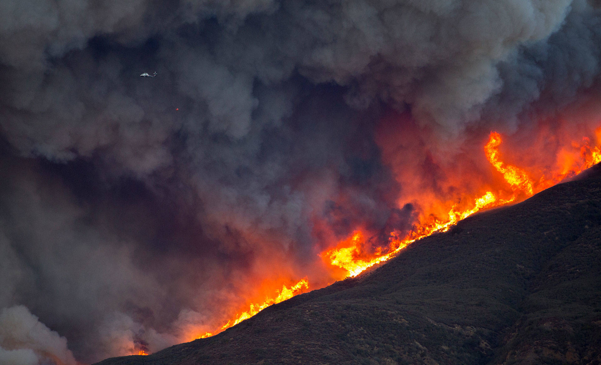 Ventura County Fire Live >> Thomas Fire Grows to 143,000 Acres, Some Evacuations Lifted | The California Report | KQED News
