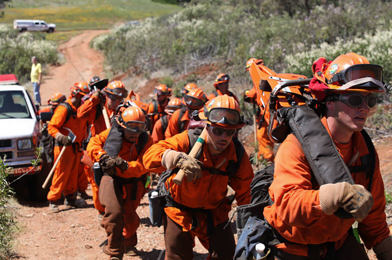 Inmates have worked fighting many recent wildfires in California.