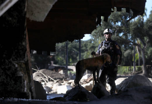 An urban search and rescue team member and his dog search a home that was destroyed by a mudslide on January 11, 2018 in Montecito.