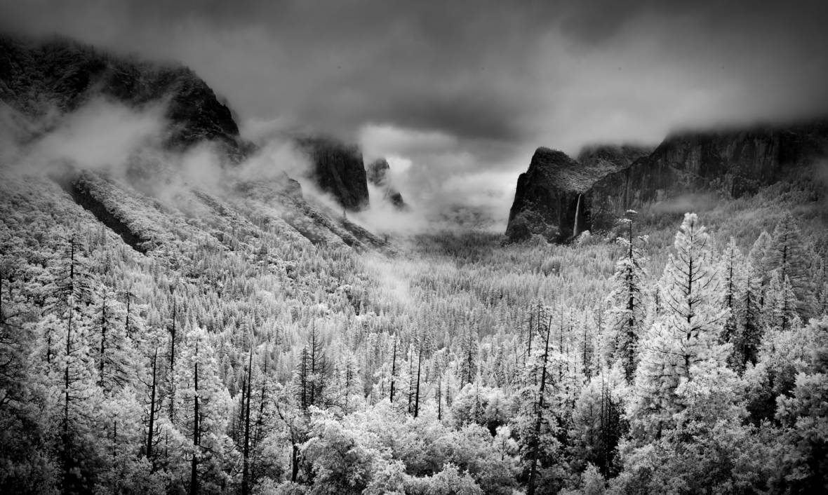 "Yosemite Valley as pictured from Tunnel View in April 2014. While the shot appears to depict snowy trees, it's an infrared image that makes green foliage appear white.   <a href=""https://flic.kr/p/nq67AP"" target=""_blank"">Howard Ignatius via Flickr</a>"