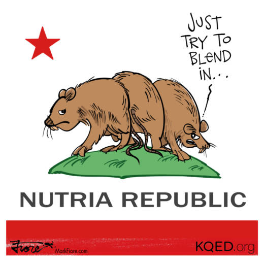 Nutria Republic by Mark Fiore