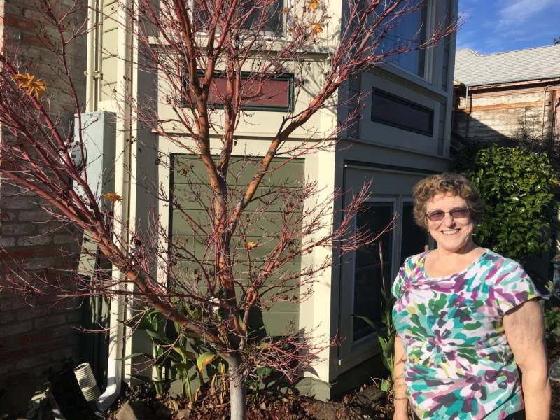 Tregloan Court resident Barbara Stuber has been living on the street since 1975.