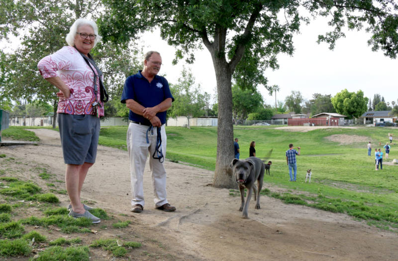 Bakersfield residents Cheryl Hill and Jay Mendenhall talk politics at Kroll Dog Park in Bakersfield. Hill said she supports President Trump, but thinks McCarthy could be doing more for the residents of his district.
