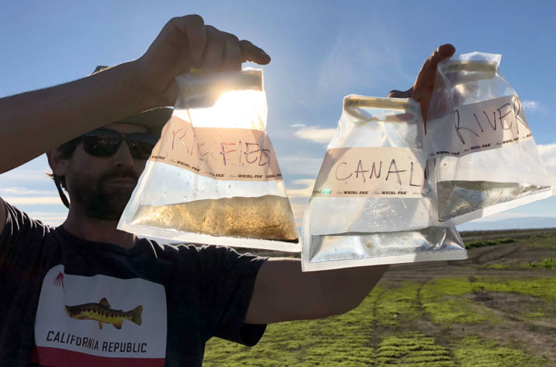 Scientist Jacob Katz compares water samples from a flooded rice field, a canal and a river. The rice field sample contains tens of thousands of bugs, great food for fish.