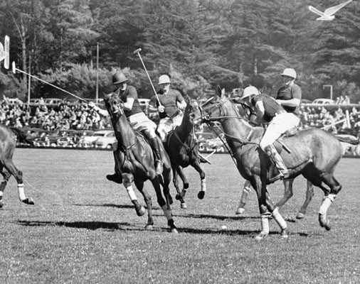 The California All-Star polo team plays the Texas Rangers at the Polo Field at Golden Gate Park on May 1, 1948.