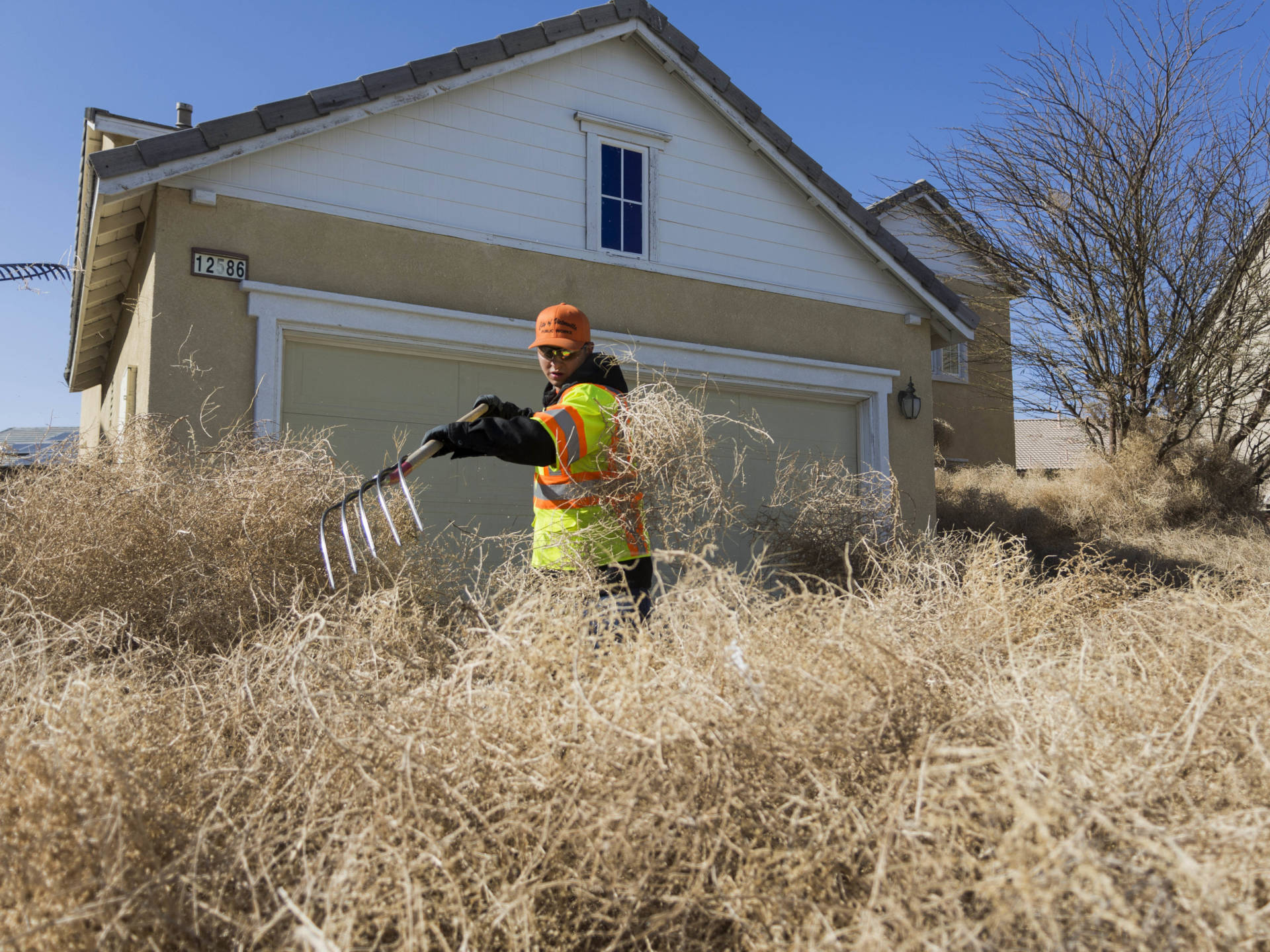 A member of the Victorville public works team clears tumbleweeds from homes on Monday. James Quigg/The Daily Press via AP