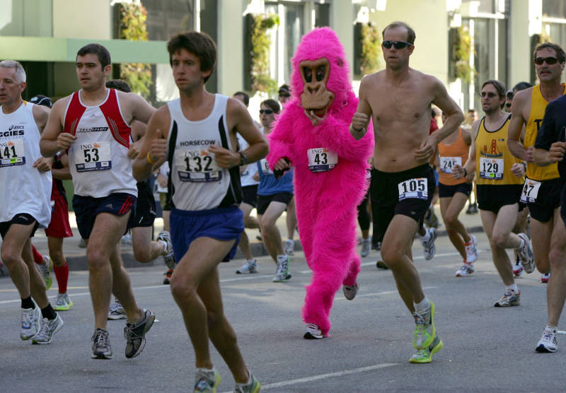 What You Need to Know About Bay to Breakers