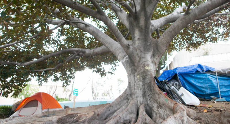 Tents are pitched near an offramp in Hollywood in March. Residents there said they prefer living outside to using a homeless shelter where couples will have to be separated and strict scheduling is enforced.