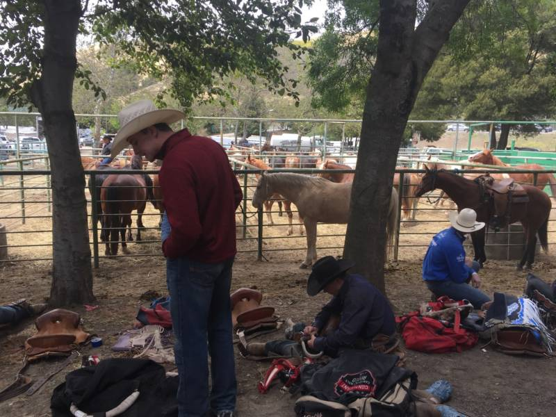 """Behind the arena, cowboys get ready for the bareback riding event. While rodeo is now considered a professional sport, rodeo organizers say its roots were more about community. """"In the old days, you used to see guys put wagons in a circle or cars in a circle and you had a rodeo in the center of that,"""" says rodeo spokeswoman Afreda Sebasto."""
