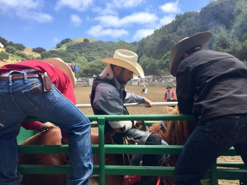 Cowboy Logan Patterson from Colorado prepares to compete in the bareback riding event. Participants come from as far away as Brazil to compete in the Rowell Ranch Rodeo.