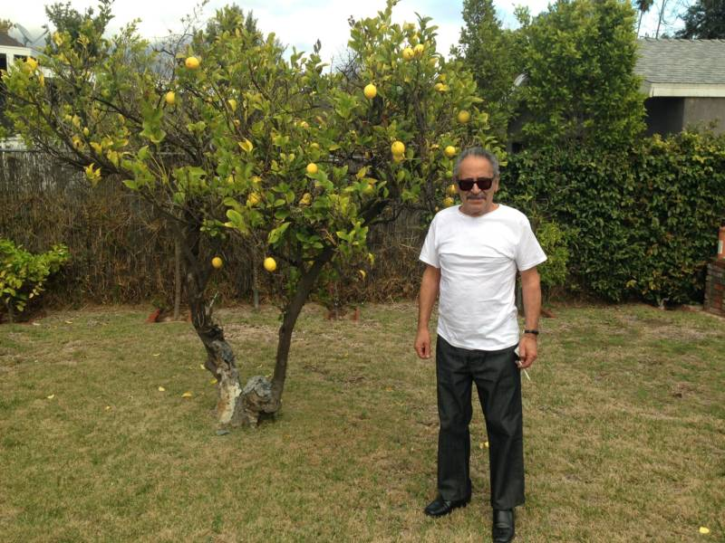 Munir Sirhan, younger brother of convicted Kennedy assassin Sirhan Sirhan, at the family home next to his brother's lemon tree.