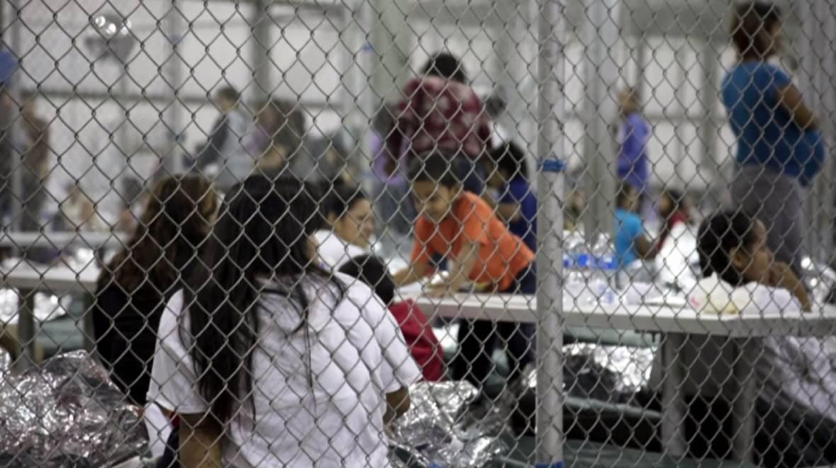 U.S. Rep. Zoe Lofgren, Separating Immigrant Families, 'Eating Animals'