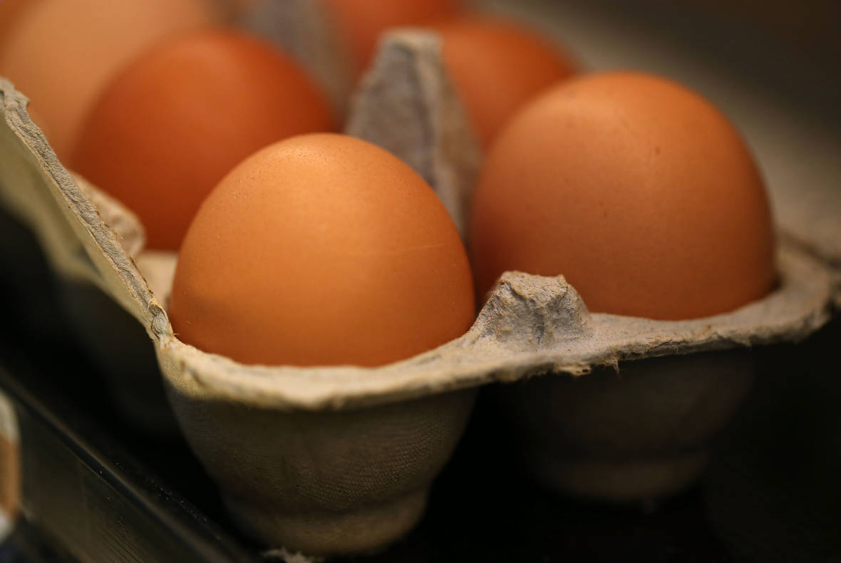 Cage-free Egg Initiative Qualifies for State Ballot