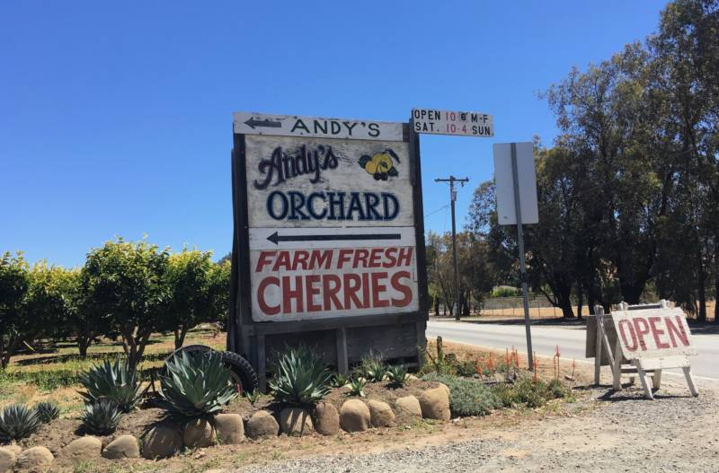 """Our store does fairly well for being out in middle of nowhere,"" says Andy Mariani of Andy's Orchard in Morgan Hill. People come from all over the Bay Area (and the US) to attend orchard tastings and stock up on heirloom fruit, especially in the summer months."