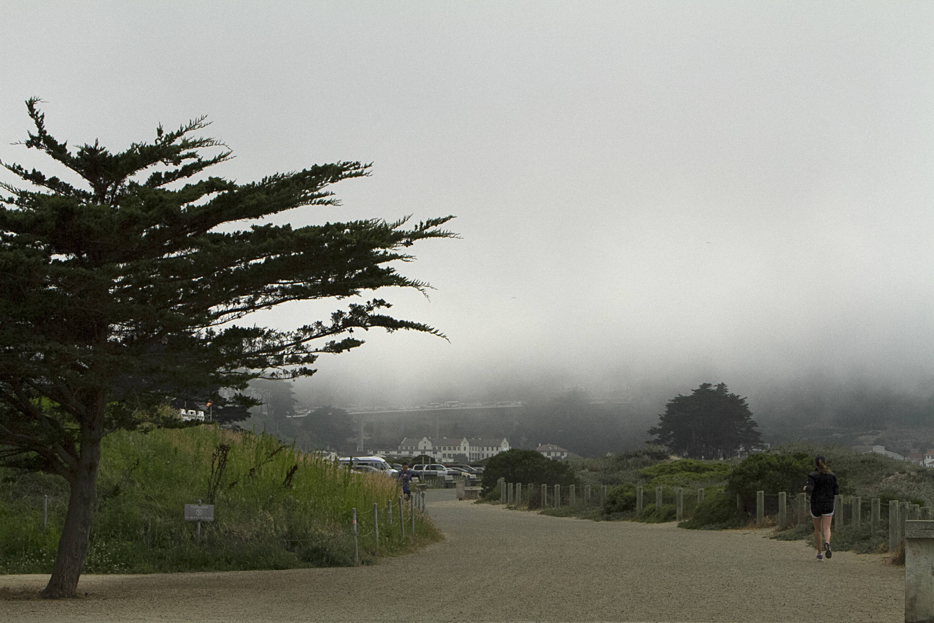 Fog settles over Crissy Field in the Marina neighborhood of San Francisco on July 13, 2018. Anne Wernikoff/KQED