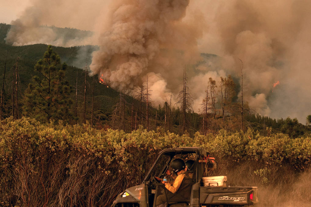 how cal fire dozer operator died  report lays out steps