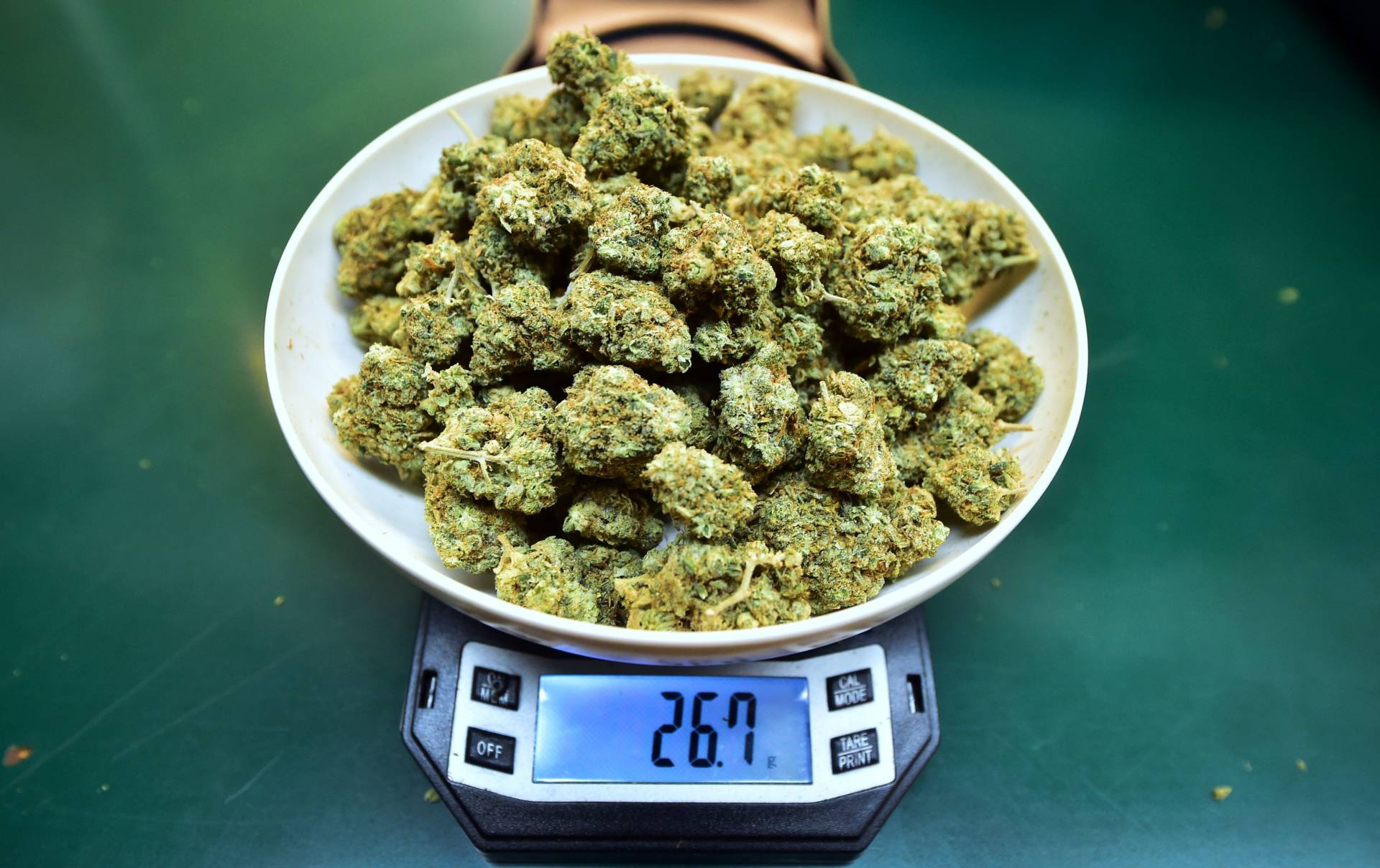Marijuana cultivation and excise tax collections hit $48 million between April and June, state officials announced Wednesday, a jump from the prior three months but well below the windfall envisioned by the state. Frederic J. Brown/AFP/Getty Images