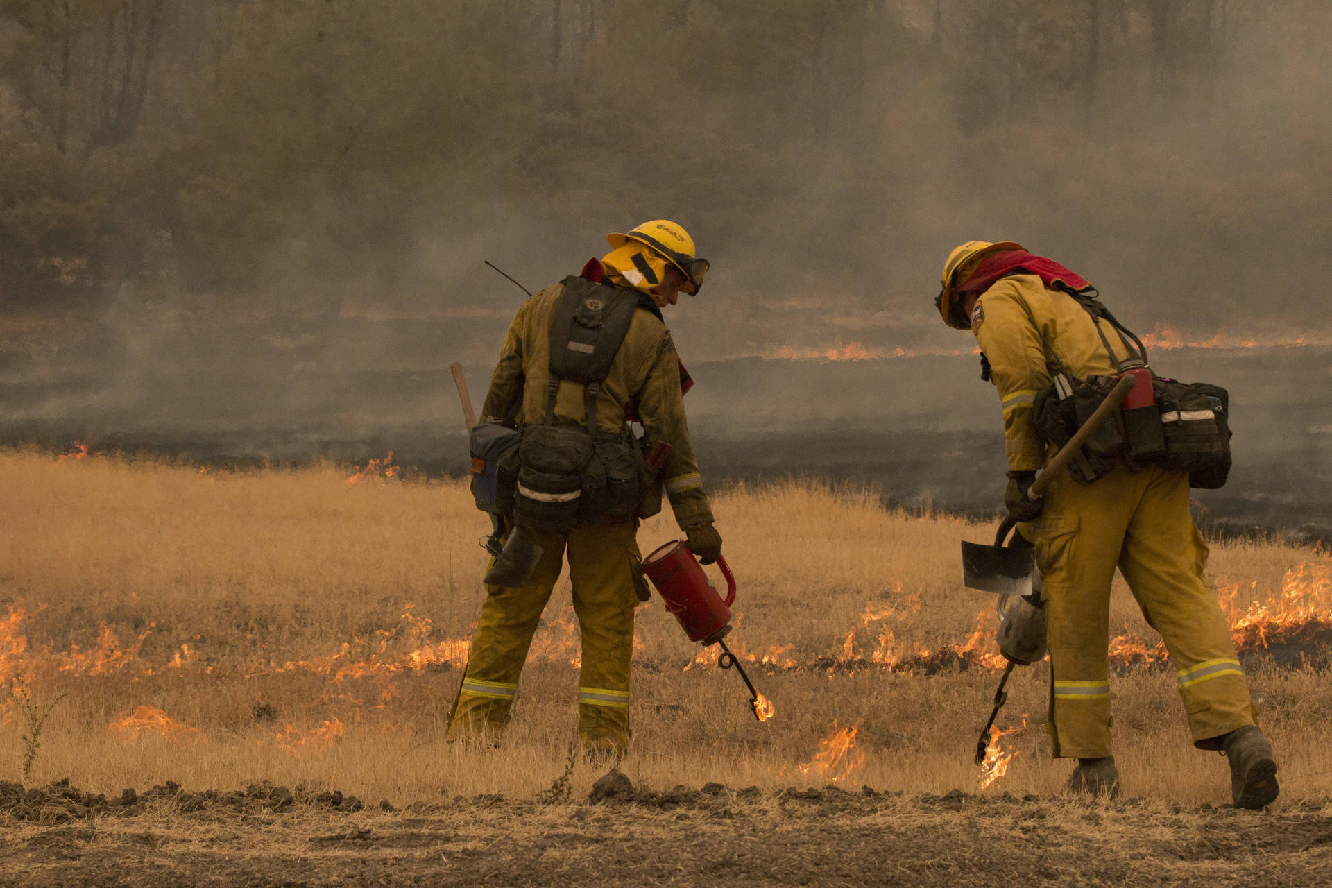 Cal Fire strike team 9272C execute a controlled burn at the southeast corner of the Ranch Fire on the Lake County and Colusa County border on Aug. 7. Anne Wernikoff/KQED
