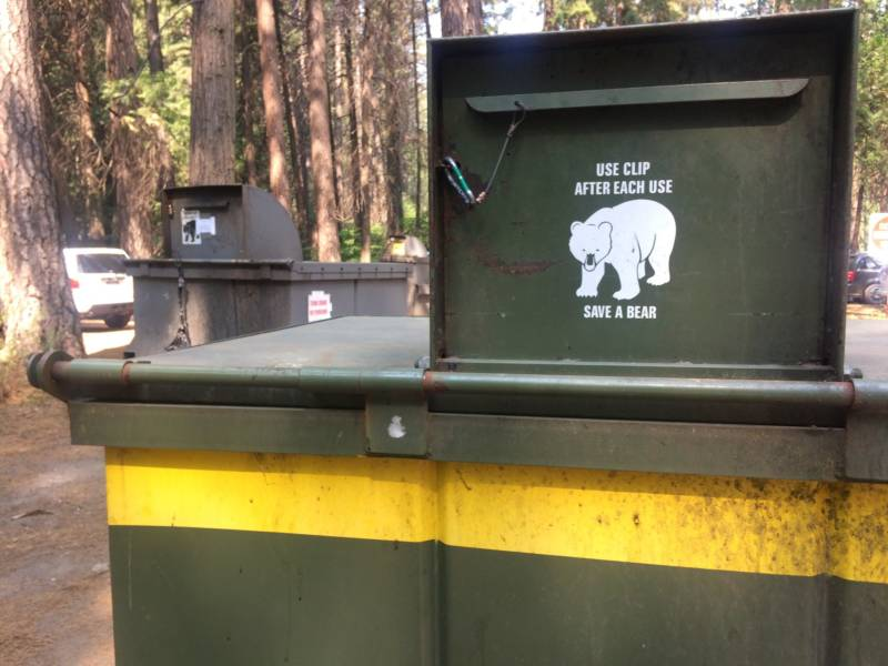 A Brief History of Bear-Proofing In Yosemite, From a Garbage Dump to Canisters