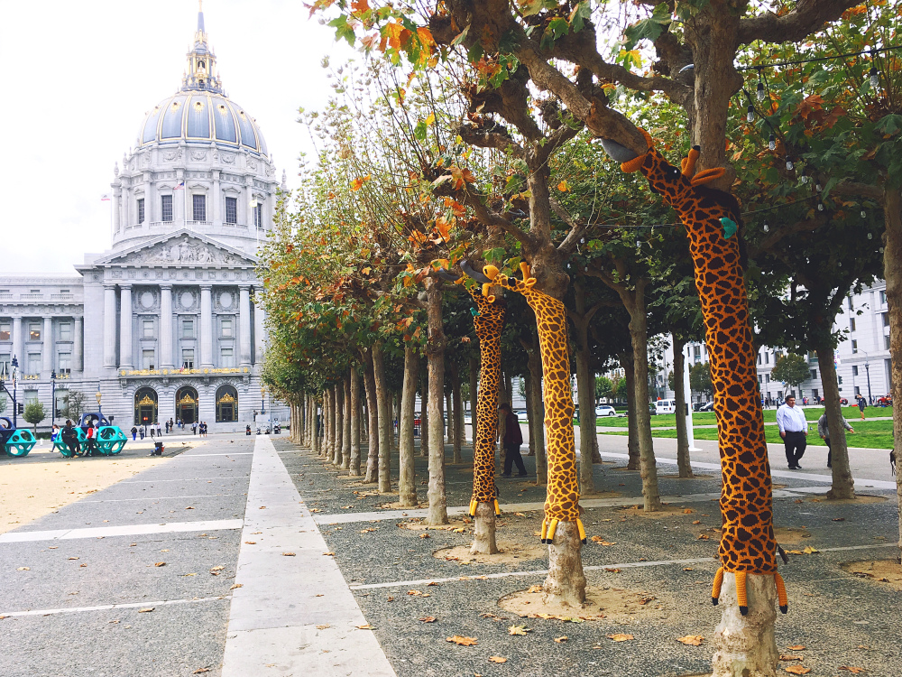 LISTEN: Who's Behind The Knitted Animals In San Francisco's Civic Center?