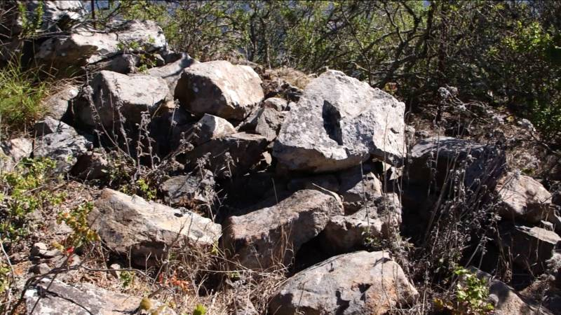 A portion of the stone walls found throughout the Berkeley Hills.