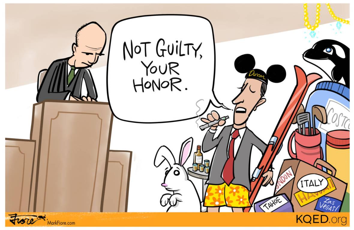 The Rabbit and the Representative