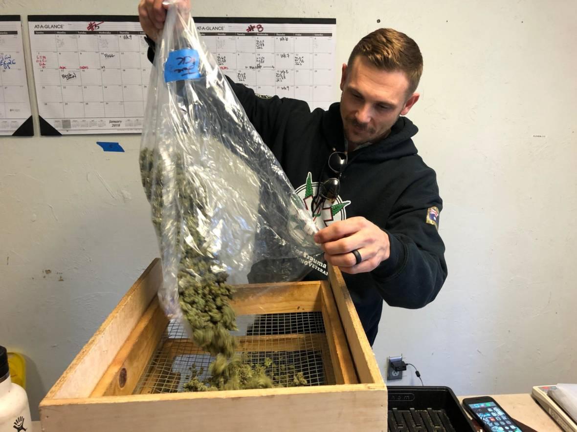 Santa Cruz Veterans Ready for VA to Change Stance on Pot