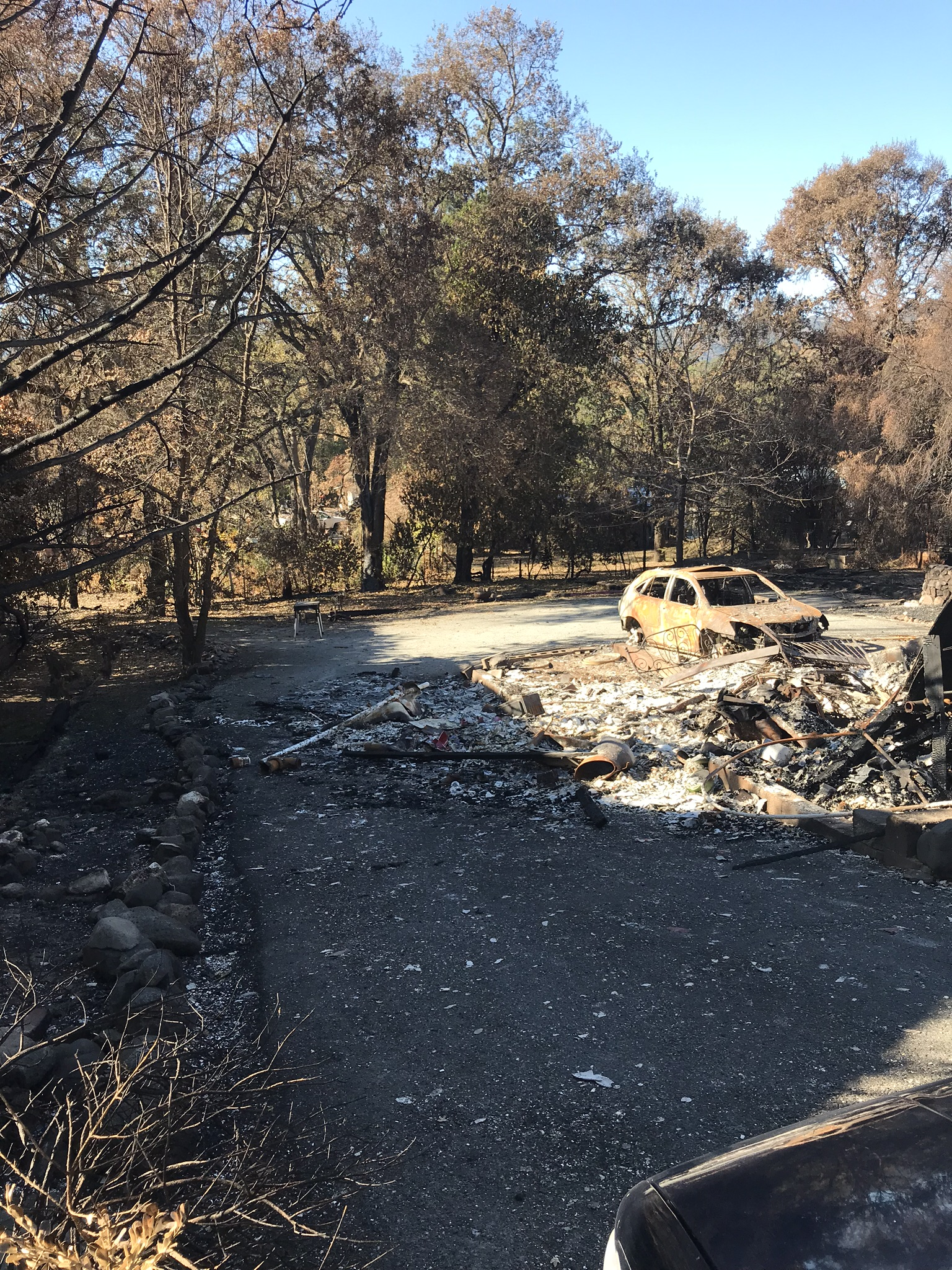 Helena Donzelli's property in Sonoma was destroyed in North Bay Fires.jpeg